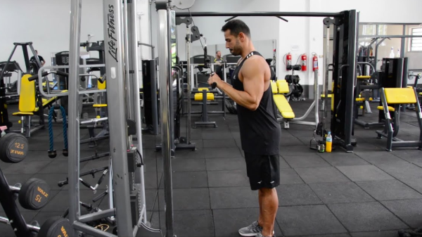 Triceps_Pulley