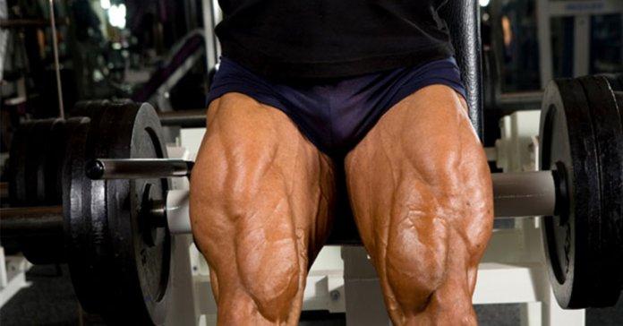 treino de quadríceps