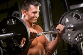 Melhores_Exercicios_Para_Cada_Grupo_Muscular